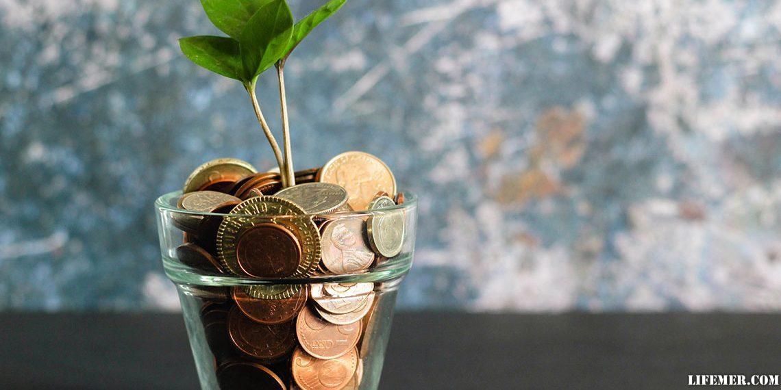 Финансовая грамотность человека